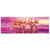 Puzzle Flamingó tánc Panoráma 1000 db-os Clementoni