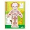 Puzzle emberi test lány fa 12 db-os Woody